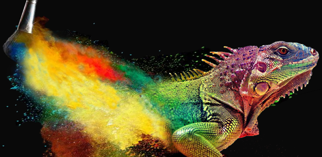 珠光颜料,变色颜料,荧光颜料